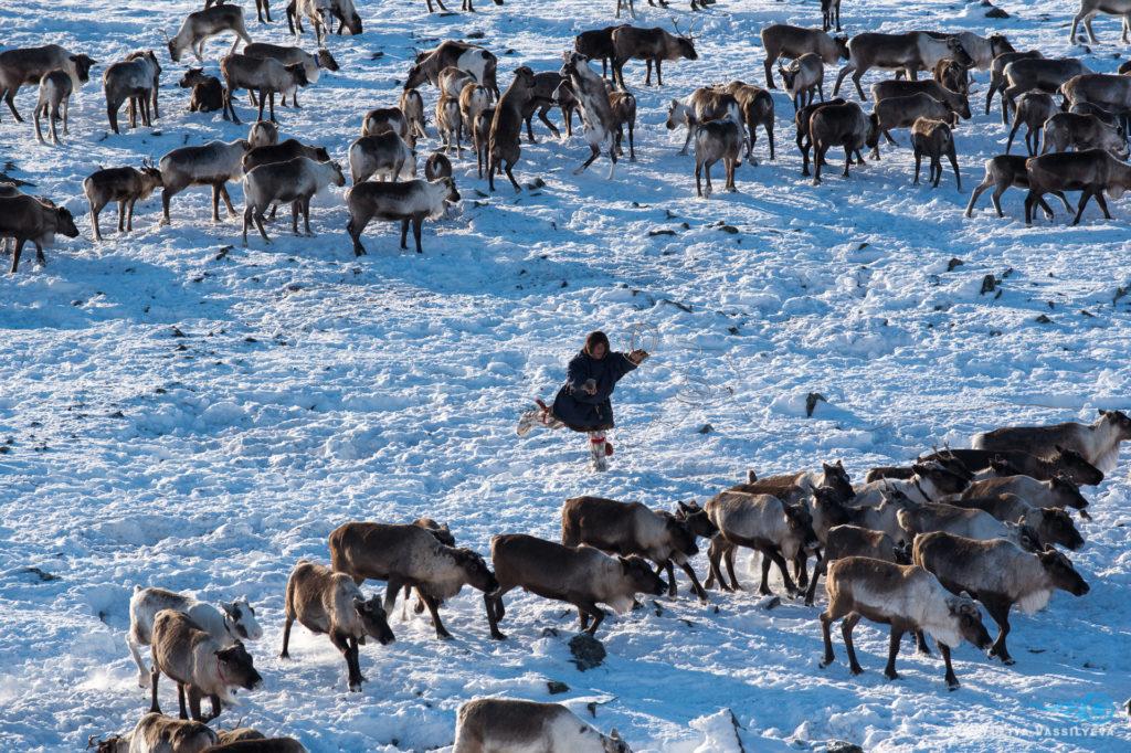Tour Yamal Russia 2019 renne